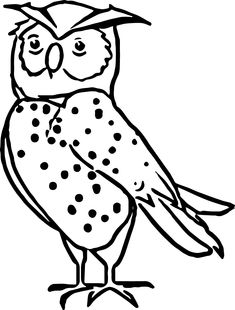 nocturnal animals coloring pages - nocturnal animals forest animals habitats theme
