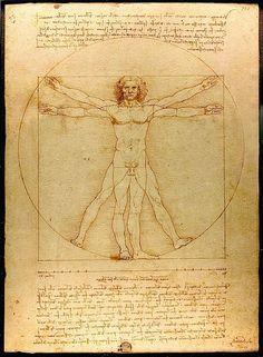 Vitruvian Man - Leonardo di Vinci