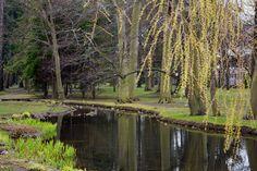 Gdańsk Park Oliwski
