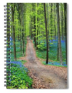 Trail Through The Bluebells spiral notebook. A trail though the Hallerbos in Belgium, also known as the Blue Forest, where once a year the forest floor is covered in millions of tiny bluebell flowers. Original work available as framed print, canvas, and more only on Fine Art America and Pixels.com. https://andrea-rea.pixels.com/ tags: Blue forest, Belgium, Brussels, Halle, ecotourism, unique, forest blue flowers, bluebells, blue flowers, natural beauty
