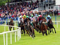 Sligo Races Hen and Stag Packages Now Available for 2020 Bourbon Bar, Party Names, Race Day, Dance The Night Away, Rock N Roll, Party Ideas, Racing, Running, Rock Roll