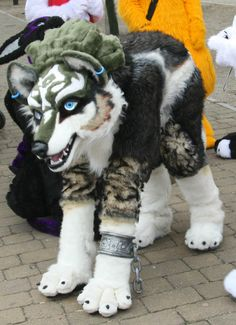 Wolf link quad. Wait is this an actual cosplay?!?! TELL ME MORE