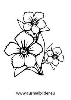 Ausmalbild Blumenkranz  Vorlagen