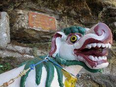 Manches im Land des Donnerdrachens macht mich glücklich. Bhutan, Stuck, Dory, Birds, Fictional Characters, Bird