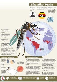 Wabah virus zika melanda dunia