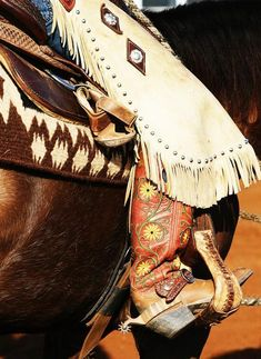 red & yellow cowboy boots & chaps