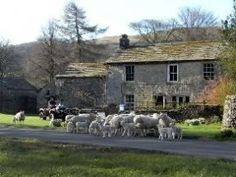 The Falcon Inn, Yorkshire Yorkshire Dales, Great Britain, Beautiful Landscapes, Places To Travel, Seaside, Scotland, Ireland, Horses, Vacation