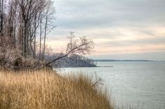 Lake Erie Bluffs - View from NW corner of Bluffs Loop Trail