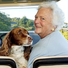 Barbara  Bush's dog Millie. The former first dog, springer spaniel, Millie, may be the most famous animal with lupus. The disease in canines is very similar to the human version, having the same symptoms, such as fatigue, hair loss, joint pain, and skin problems. Like humans, dogs can lead healthy lives with lupus if they receive effective treatment to quell their overactive immune systems. (Millie lived to be 12.)
