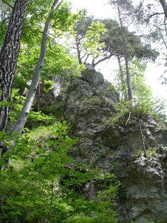 Aufstieg zum #Kalvarienberg in #Füssen über den #Schwansee