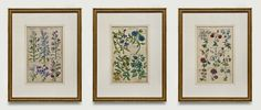 Attention to detail makes our fine framing stand above the rest, with framing to suit every type of art and decorating style. Old Maps, Antique Maps, Antique Prints, Types Of Art, Custom Framing, Decor Styles, Vintage World Maps, Gallery Wall, Rest