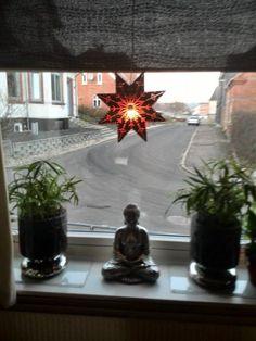 Jeg har fået sat en julestjerne med lys i mit stuevindue, det ser så hyggeligt ud, der er også blevet sat en op i værelset ved siden af stuen, så der er en julestjerne i begge vinduer ud mod gade, ...