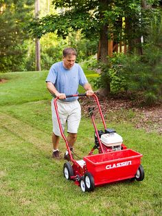 In the North, overseed thin lawns or large dead areas. Keep the newly seeded sections moist while seeds sprout. Frequent light sprinklings are best at first. Gradually increase the interval between waterings to encourage the roots to grow deeper into the soil.        Learn about the differences between cool-season and warm-season grasses.