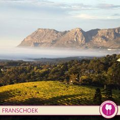 Have you visited the longest Wine Route in the world? Franschhoek - home of La Clé des Montagnes- 4 luxurious villas on a working wine farm