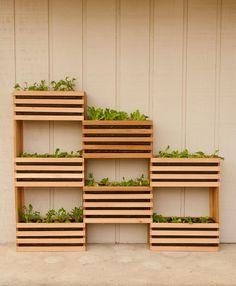 Small Backyard Garden Ideas & Tips ~Family Food Garden Vertical Vegetable Gardens, Vertical Garden Diy, Vertical Planter, Vegetable Gardening, Wooden Crate Vegetable Garden, Vertical Plant Wall, Vegetable Crafts, Veggie Gardens, Small Backyard Gardens