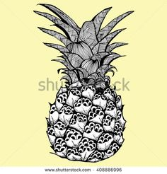A pineapple. Plant. Exotic fruit. Line art. Black and white drawing by hand…