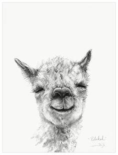 Llama Draw You A Portrait - Rebekah Wall Art Alpacas, Animal Sketches, Animal Drawings, Drawing Sketches, Lama Animal, Alpaca Drawing, Llama Arts, Art Inspiration Drawing, Animal Paintings