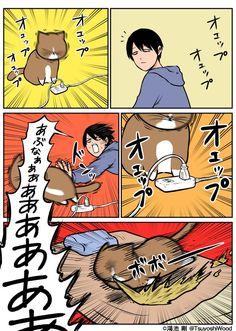 Japan Funny, 3d Pictures, Cat Comics, Funny Cats, Comedy, Cute Animals, Jokes, Manga, Humor