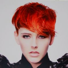 Goldwell ColourZoom challenge Miami USA 2011 New Talent category Winning Entry by Demi-Leigh.