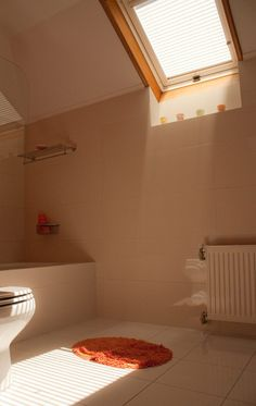VELUX roof windows will add an amazing amount of light to your room, cheering it up and saving your electricity.