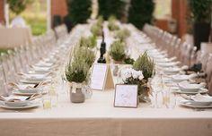 Just Wenderful Event Planning and Design: Real Wedding :: Veronica + Riccardo Woodsy Wedding, Green Wedding, Wedding Table, Wedding Blog, Diy Wedding, Wedding Flowers, Wedding Ideas, Wedding Stuff, Tuscan Wedding