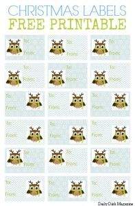 Free Christmas Gift Tag Printable - Owl Themed