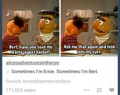 Sometimes I'm Ernie. Sometimes I'm Bert.