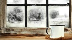 How to Insulate Windows in Your Apartment