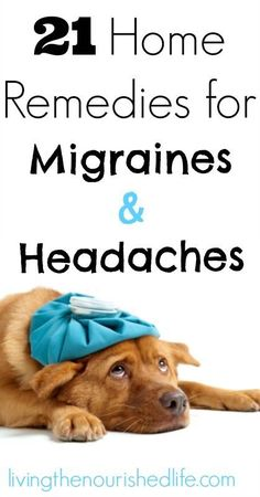 Migraine Remedies 21 Home Remedies for Migraines and Headaches -- The Nourished Life - Need fast headache relief? Mother Nature has your back! Try one of these tried-and-true natural home remedies for migraines and headaches. Migraine Home Remedies, Home Remedy For Headache, Natural Headache Remedies, Migraine Relief, Natural Health Remedies, Natural Cures, Herbal Remedies, Migraine Pain, Home Remedy For Migraines