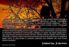 Ábra:  Kyranda mágusnő, a történet egyik főszereplője meditáció közben egy varázslat előkészítésén fáradozik.
