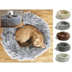 Lana, Capello and Sherpa Cat Donut Bed (dogs allowed ;-) // purrfect design