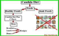 Candida Diet  The anti - Candida diet is actually a complex of steps targeted at cleaning the body from the damaging effects of the fungus infection.   Step one in treating will be the Candida diet which is reduced sugars. Sweets is one of the major reasons for Candida overgrowth. Sugars helps yeast cells in creating their own cell walls, growing their groupes and also switching into their toxic fungal form.   Read more about Candida Diet on our site.