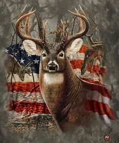 Diamond Painting Kits for Adults Full Drill- Diamond Art Kits for Beginners and Students with Adults' Paint-by-Number Kits for Wall Decoration, Gift, Relax (Flag Deer) Whitetail Deer Pictures, Deer Photos, Deer Pics, Hunting Art, Turkey Hunting, Hunting Painting, Deer Hunting Humor, Hunting Wallpaper, Camo Wallpaper