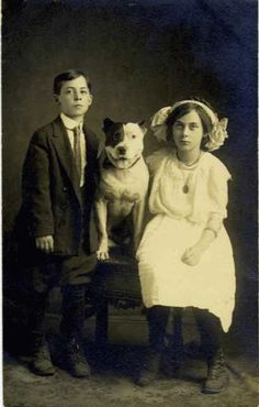 """Pitbull - they used to be called """"Nanny Dogs"""" because they were great with children. :) best dogs ever!"""