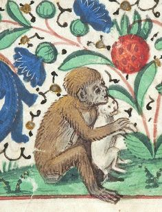 Monkey hugs a kitten, from a Book of Hours, Brussels, about 1475. Morgan Library