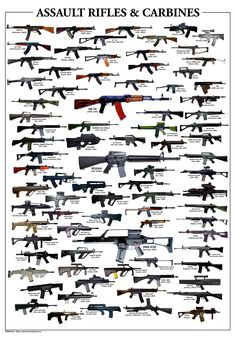 Assault Rifles & Carbines all of it will be mine.