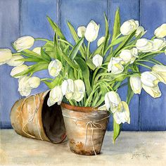 White Tulips in Flower Pots Limited Edition Print, Original & Greeting Card by Janie Pirie - Botantical Artist