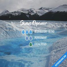 Sinus Opener - Essential Oil Diffuser Blend
