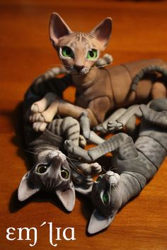 I got my Oleum BJD cat kit about a week back together with a 2 more kits to be painted as a commission. I ordered the 6cm Sphinx and the other kits were a 6cm Oriental and a 7cm Sphinx. Mine is the silver cocoa one with Classic Ocicat pattern.  The cat's are 3D printed and I painted them by layering dye made by diluting acrylic paint. I seeped the gradient base dye in forst and then added detail layer by layers and did a dry brushing with white to give them a more furry feel. I also glued on…