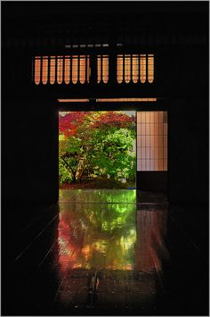Autumn colors are reflected in black with polished wooden floor Jissoin Iwakura Kyoto Japan.