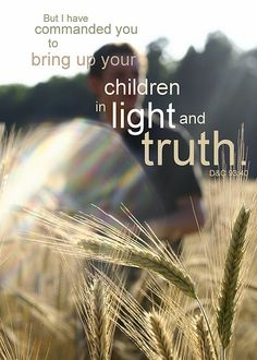 nice light and truth 2 / http://www.mormonlaughs.com/light-and-truth-2/