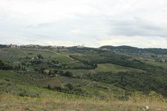 When in Tuscany one must set aside time to journey out to the Tuscan countryside and explore a world-famous winery Jennifer Martin, World Famous, Tuscany, Countryside, Journey, Italy, Explore, Outdoor, Outdoors