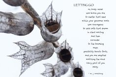 and here we have the breaking. words and images © copyright melody armstrong 2015 Letting Go, Poetry, Let It Be, Words, Movie Posters, Image, Film Poster, Popcorn Posters, Giving Up