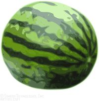 watermelons melons clip art royalty free