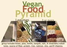 Vegan Food Pyramid.  Cold and flu season is coming up, so keep your immune system strong by increasing your zinc and vitamin c intake.