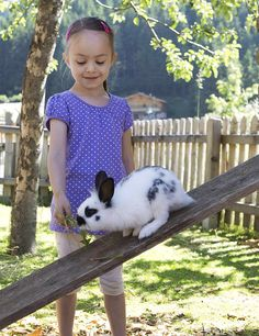 Mithelfen beim Tiere Füttern // Assist in the animal feeding News Stories, Adventure