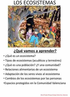 Silvia Pintado, del Parque-Colegio Santa Ana (Valencia) nos envía un nuevo tema adaptado para Naturales, Los ecosistemas. DESCARGA EL TEMA LOS ECOSISTEMAS. ARTÍCULOS RELACIONADOS EN ESTE BLOGPRIMER TRIMESTRE ADAPTADO CONECTA CON PUPI 2º CURSO DE PRIMARIA (3)Adaptación de Sociales 5º E.P. (2)Registros de Criterios e Indicadores de Evaluación adaptados. Pensados también para Evaluaciones Iniciales. (2)Tema …