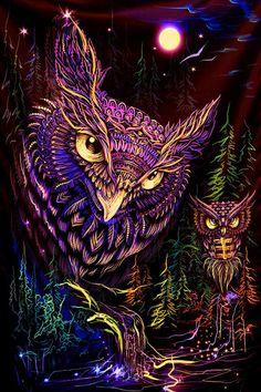 Art Visage, Owl Artwork, Owl Wallpaper, Psychedelic Tapestry, Owl Illustration, Owl Pictures, Banner Backdrop, Hippie Art, Flower Of Life
