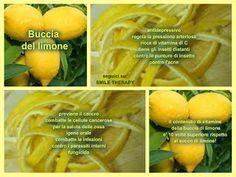 Buccia di limone, una parte preziosa del frutto