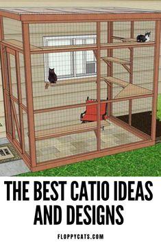 Diy Cat Enclosure, Dog Enclosures, Outdoor Cat Enclosure, Outside Cat House, Cats Outside, Outdoor Cats, Outdoor Cat Kennel, Outdoor Cat House Diy, Outdoor Cat Cage